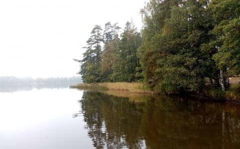 Rusutjärvi
